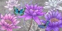 Nympheas and Butterflies (Ash) Fine-Art Print