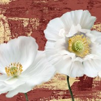 Washed Poppies (Red & Gold) I Fine-Art Print