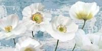 Washed Poppies (Aqua) Fine-Art Print