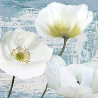 Washed Poppies (Aqua) II Fine-Art Print
