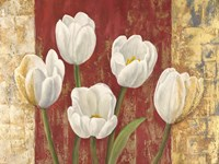 Tulips on Royal Red Fine-Art Print