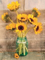 Country Sunflowers I Fine-Art Print