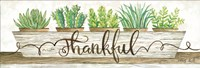 Thankful Succulent Pots Fine-Art Print