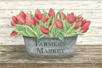 Farmer's Market Tulips Fine-Art Print