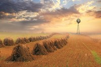 Amish Country Sunrise Fine-Art Print