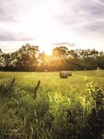 Daybreak in the Country I Fine-Art Print