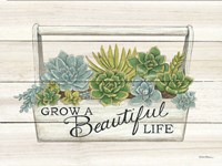 Beautiful Life Succulents Fine-Art Print
