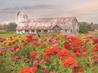 Vermont Flowers Fine-Art Print