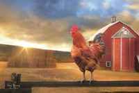 Good Morning Rooster Fine-Art Print