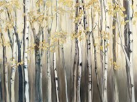 Golden Birch III Fine-Art Print