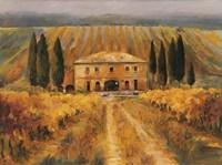 Toscana Vigna Special Fine-Art Print