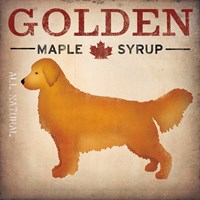 Golden Dog at Show No VT Fine-Art Print