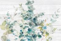 Eucalyptus I on Shiplap Crop Fine-Art Print