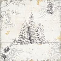 Wild and Beautiful XIII Fine-Art Print