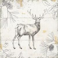Wild and Beautiful X Fine-Art Print