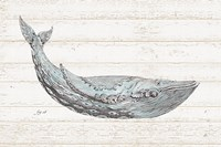 Underwater Life I Blue Fine-Art Print