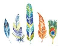 Rainbow Feathers III Fine-Art Print
