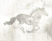 Mustang Study Neutral Fine-Art Print