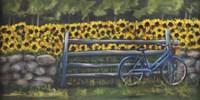 Resting At Buttonwoods Fine-Art Print