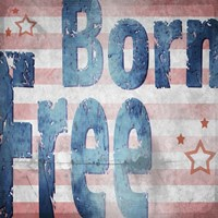 American Born Free Sign Collection 1 Fine-Art Print