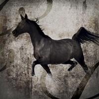 Gypsy Horse Collection V1 2 Fine-Art Print
