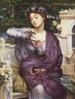 Libra and Sparrow Fine-Art Print