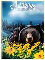 Gatlinburg Tennessee Fine-Art Print