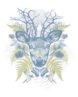 Deer Adventure Fine-Art Print