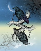 Raven Night and Day Fine-Art Print
