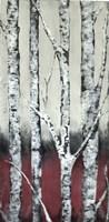 Autumn Birch Fine-Art Print