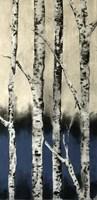 Winter Birch Fine-Art Print