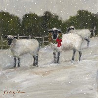 Sheep in Snow Fine-Art Print