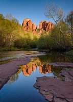 Cathedral Rock Reflection Vertical Fine-Art Print