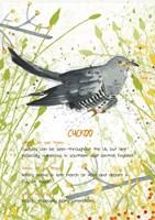 Cuckoo Postcard Fine-Art Print