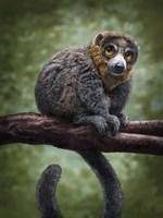 Mongoose Lemur Totem Fine-Art Print