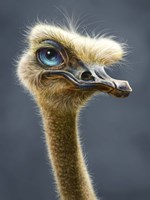 Ostrich Totem Fine-Art Print