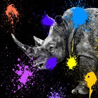 Safari Colors Pop Collection - Rhino Portrait Fine-Art Print