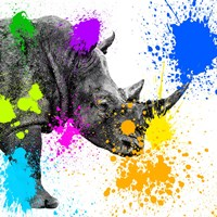 Safari Colors Pop Collection - Rhino Portrait II Fine-Art Print