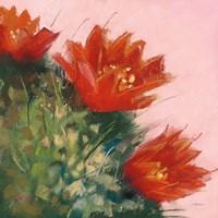 Blooming Succulent IV Fine-Art Print