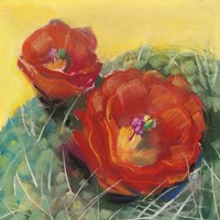 Blooming Succulent I Fine-Art Print