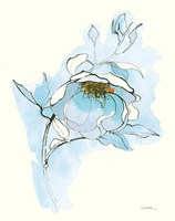 Carols Roses V Blue Fine-Art Print