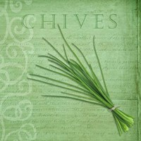 Classic Herbs Chives Fine-Art Print