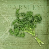 Classic Herbs Parsley Fine-Art Print