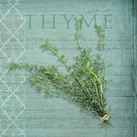 Classic Herbs Thyme Fine-Art Print