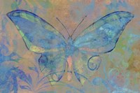 Turquoise Butterfly Fine-Art Print