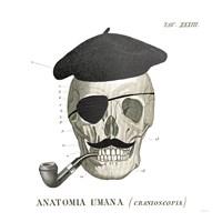 Dandy Bones VI Framed Print