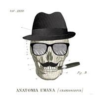 Dandy Bones V Fine-Art Print