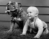 1950s 1960s Baby Seated Next To Bulldog In Grass Fine-Art Print