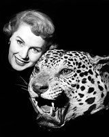 1950s Woman Face Posed With Growling Stuffed Leopard Head Fine-Art Print