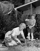 1960s Boy Helping Grandmother Plant Flowers Fine-Art Print